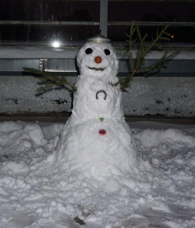 Sniegavirs.thumb.jpg.d08c29813767d0db0248afad397d8d0d.jpg
