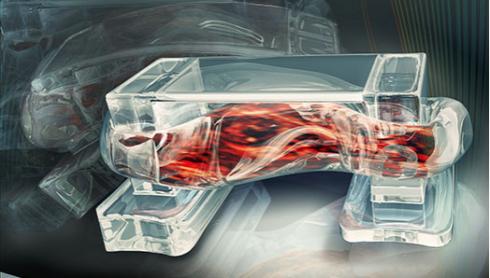 walking-bio-robot-spinal-muscle