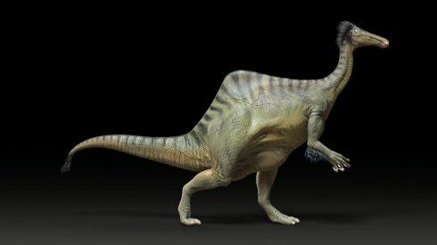 ornithomimosaurs1014