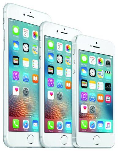 iphone-503x640